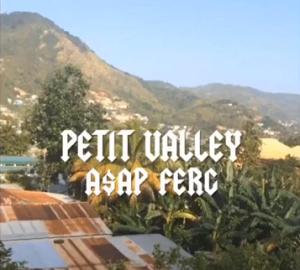 petit valley